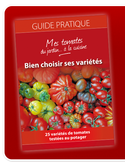 Guide Tomates